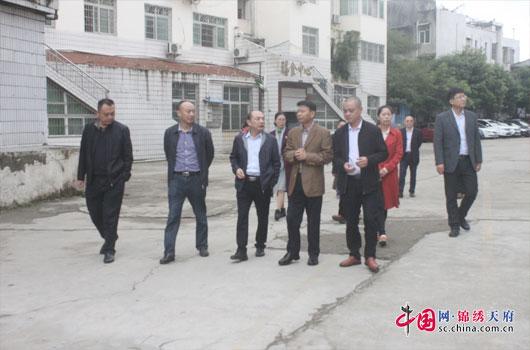 省、市领导到仪陇县南图实验学校检查安全工作