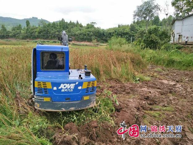 蓬溪县文井镇:盘活闲置土地,助村民增收