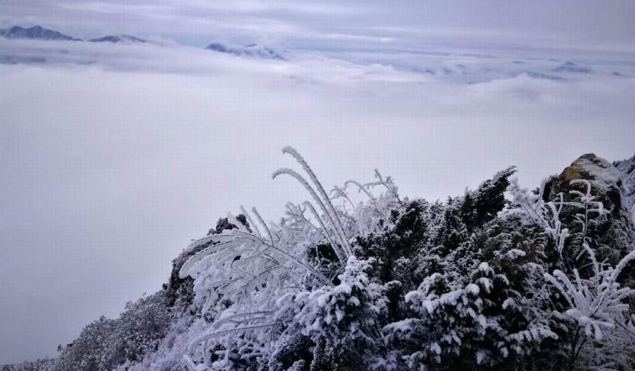 二郎山喇叭河景区雪景迷人