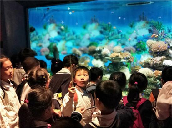 旨在通过参观极地海洋动物展示区,观看鲸豚表演,海豹海狮表演等,了解