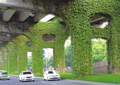 美翻了 成都二环高架变身绿色长廊