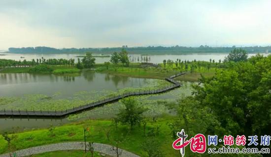 @所有人 新津白鹤滩国家湿地公园美翻成都