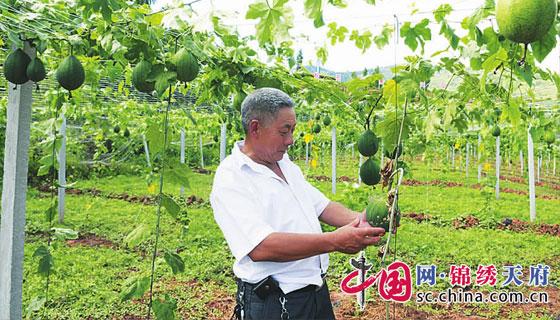 http://www.ncchanghong.com/qichexiaofei/16340.html