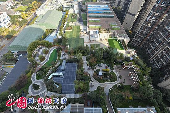 成都高新区探索增绿新模式 推进多层次立体绿化