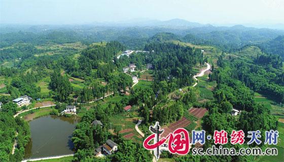 蓬安海田乡:产业发展促增收 农旅融合走新路