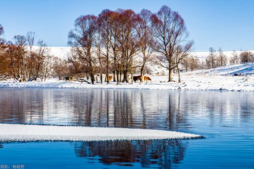 内蒙古阿尔山市旅游推介会暨冬季旅游政策发布会在成都精彩亮相
