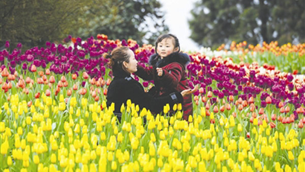 本月底到5月初 成都全市赏花买花最强攻略来了