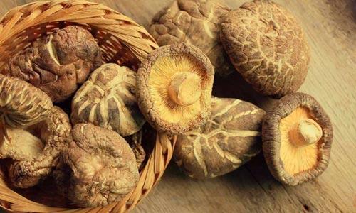 吃蘑菇可降低患认知障碍风险