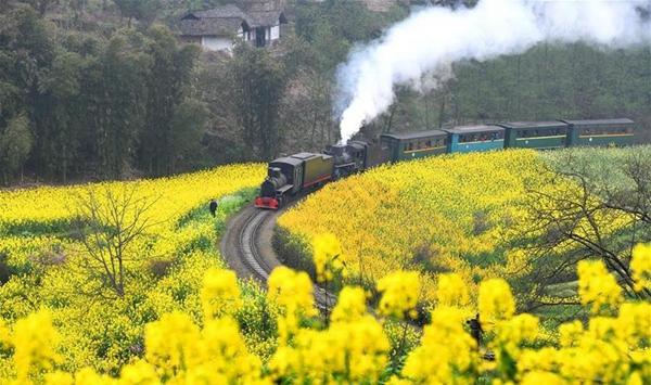 """四川犍为:""""开往春天""""的小火车"""