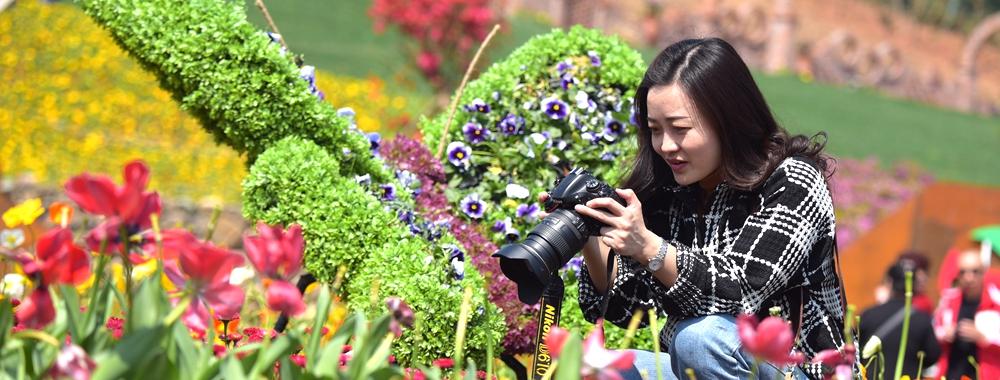 """广元利州又添一景 """"花花世界""""将于4月12日开园"""