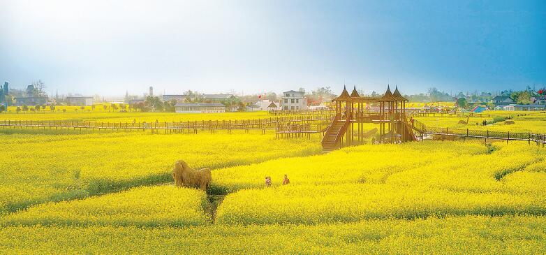 西高镇:打好农旅融合牌 建田园风情小镇