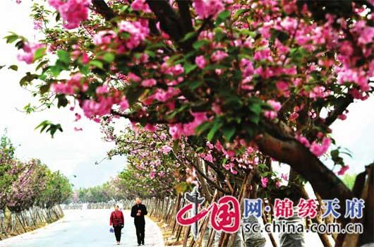 http://www.ncchanghong.com/nanchonglvyou/10008.html