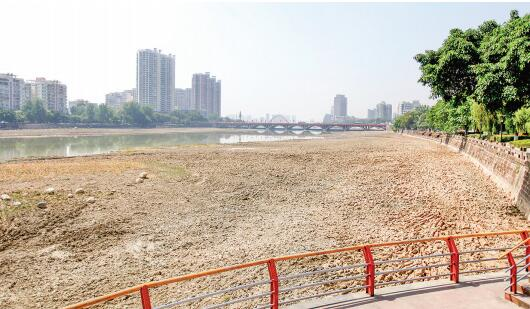 旌湖清淤工程全面完成 新建7处鸟岛成亮点