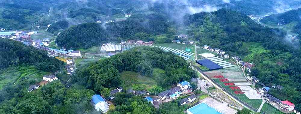 炎炎夏日逃离火炉 到四川曾家山享受23°的夏天