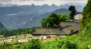 四川广元:曾家镇登全国农业产业强镇建设名单