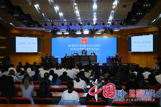 四川省成都市中级人民法院开展庭