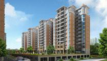 广安区专项整治房地产市场乱象