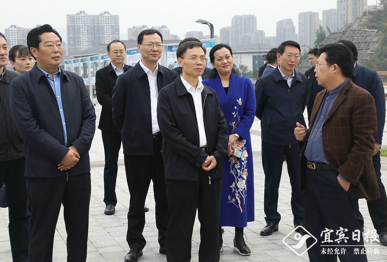 陈振冲在宜调研综合保税区创建工作