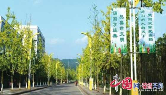 蓬安县全力推进创建省级文明城市