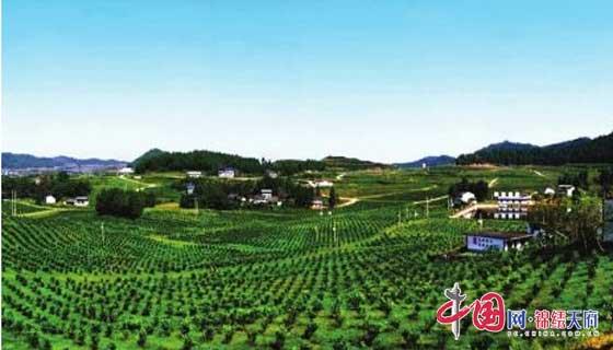 http://www.ncchanghong.com/nanchongfangchan/17190.html